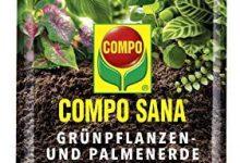 Los Mejores Mantillo para plantas de interior