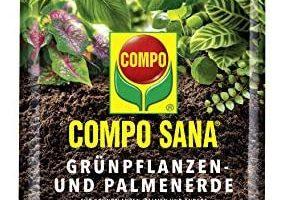 Mantillo para plantas, abono plantas, humus, compost plantas, fertilizar plantas