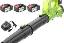DENGS Soplador Con cargador, soplador de hojas, Aspirador y Triturador de Hojas, Volumen de aire: 4.0/4.5/5.0/6.0m³ / min/C / 6.0m³/min