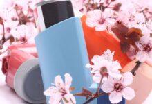 6 Plantas Medicinales para las Alergias de Primavera