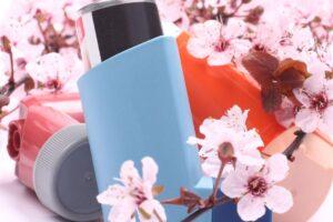 6 plantas para las alergias de primavera