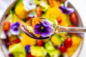 Como Cultivar Flores Comestibles.