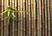 Decora el Baño con Bambú: Ideas Originales 2021