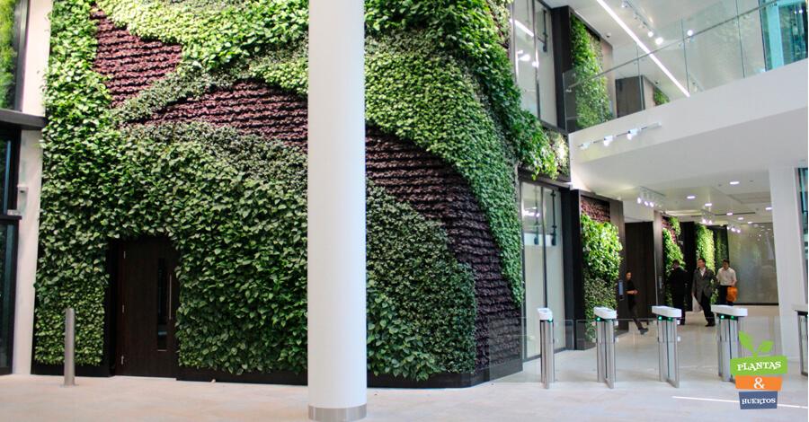 Plantas paredes verdes, enredaderas, paredes verdes, pared verde