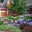 plantas para el frente de tu casa